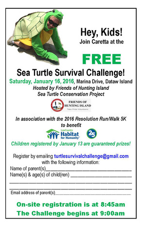 TurtleSurvivalChallenge